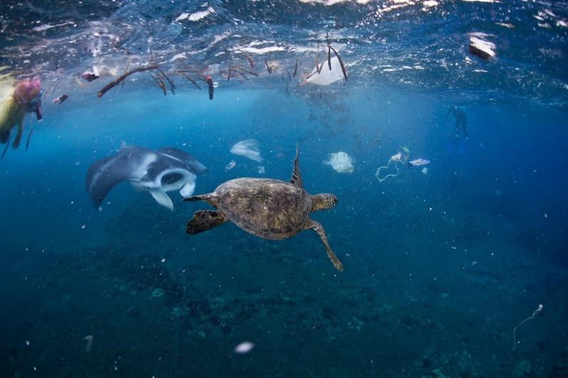 plast v oceánu 3