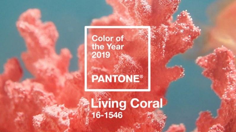 living coral barva roku 2019